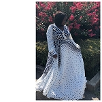 The Speckled dress
